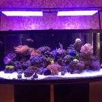 LED-Aquarium-lights