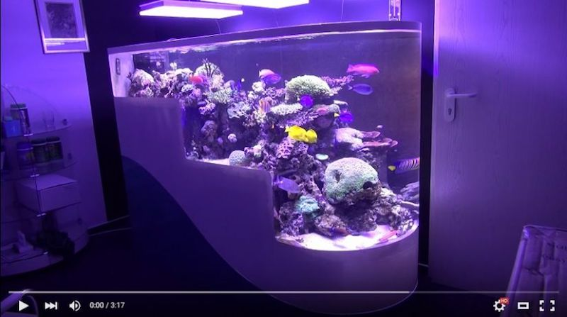 Aquarium LED-lighting00010