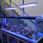 Aquarium LED-lighting00028