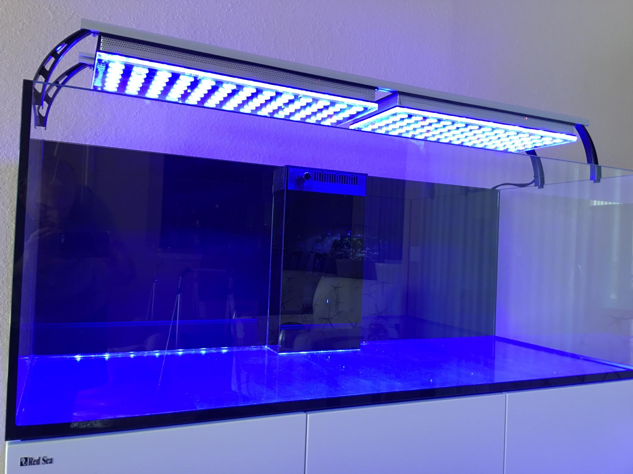 rode zee aquarium led verlichting