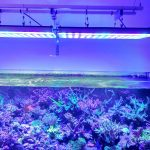 אטלנטיק- V4-LED-aquarium-Light