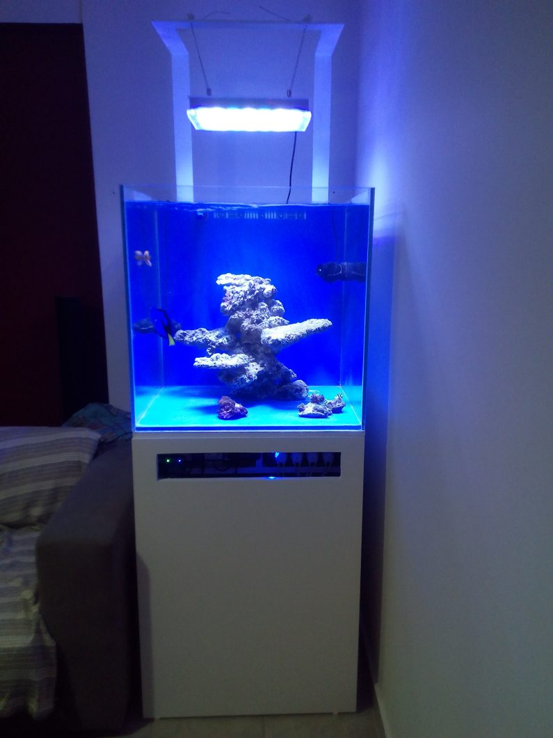 LED-aquarium-light-orphek-atlantik קומפקטי