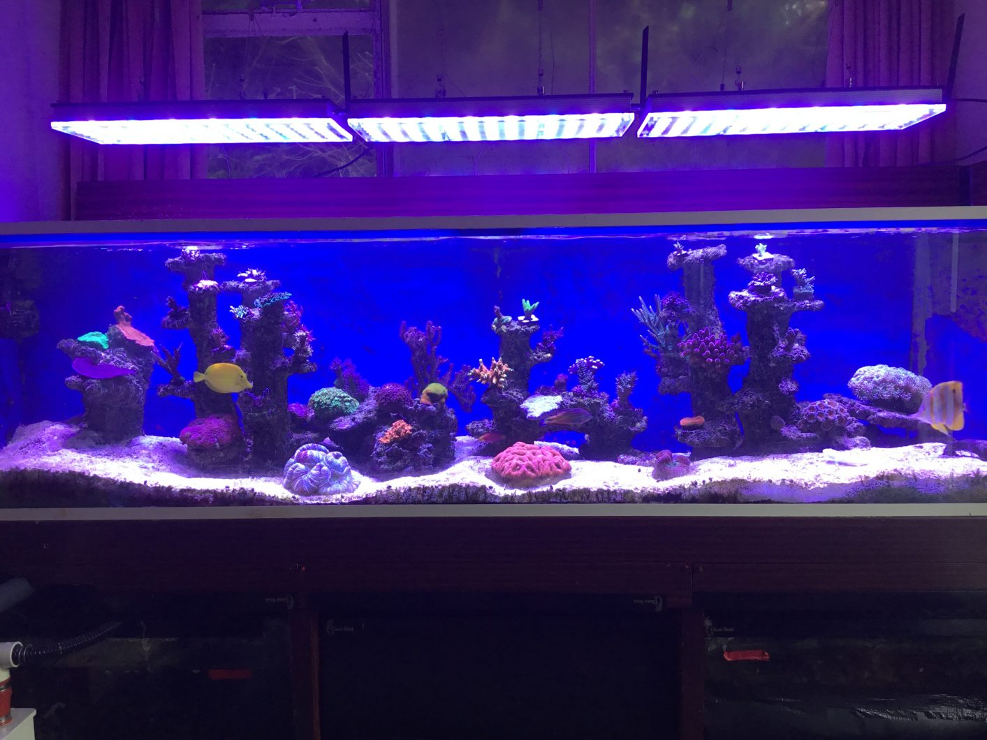 Orphek-atlantik-v4-Reef-aquarium-LED-light