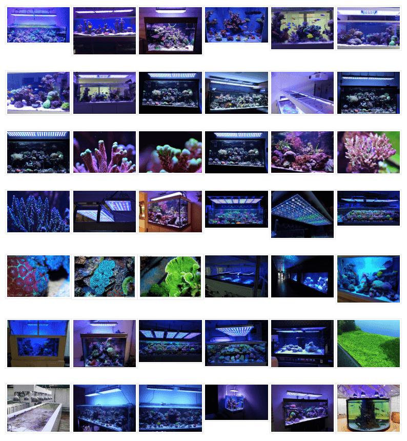 アクアリウムLED照明2017