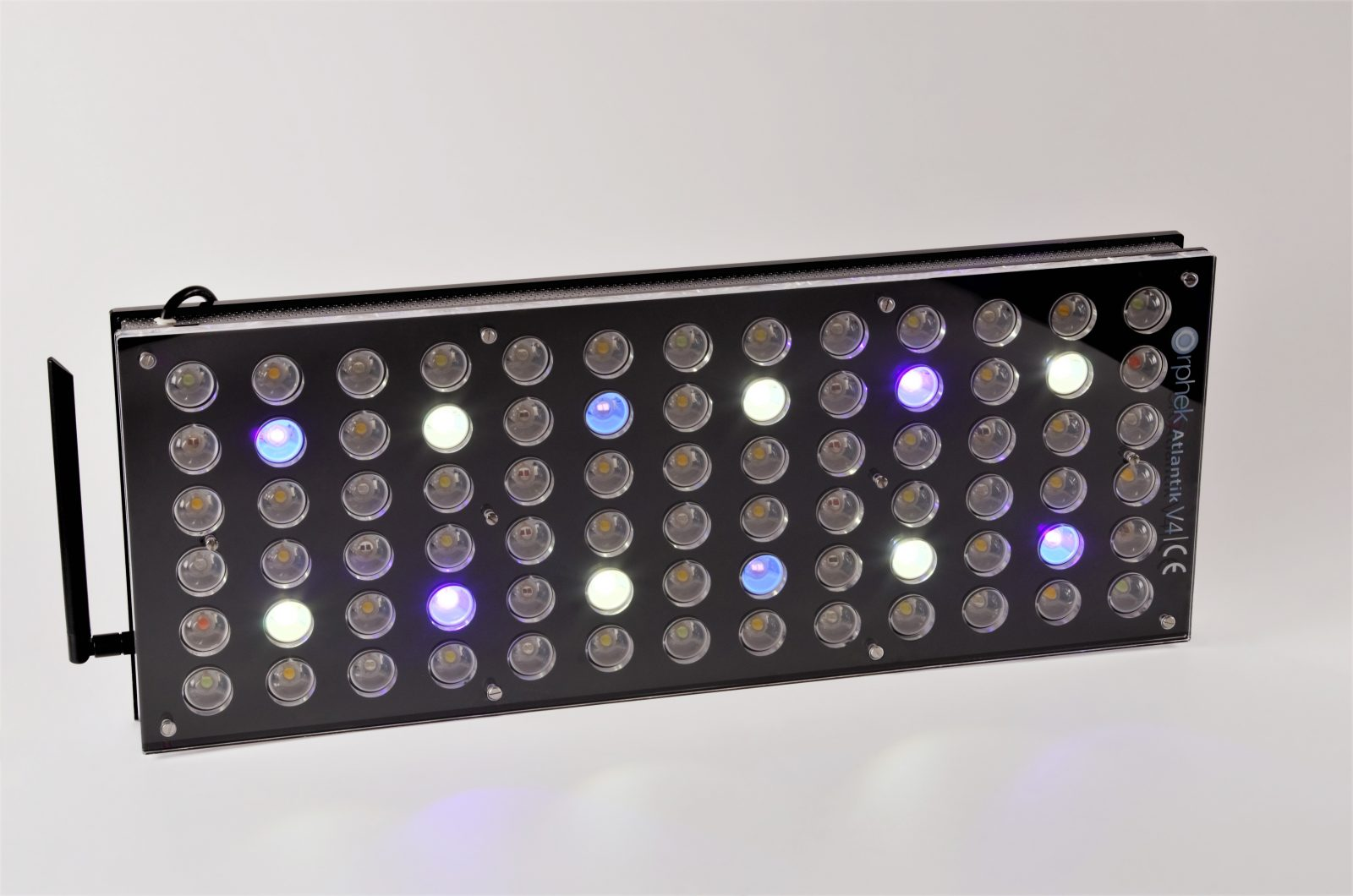 lampu akuarium ditanam