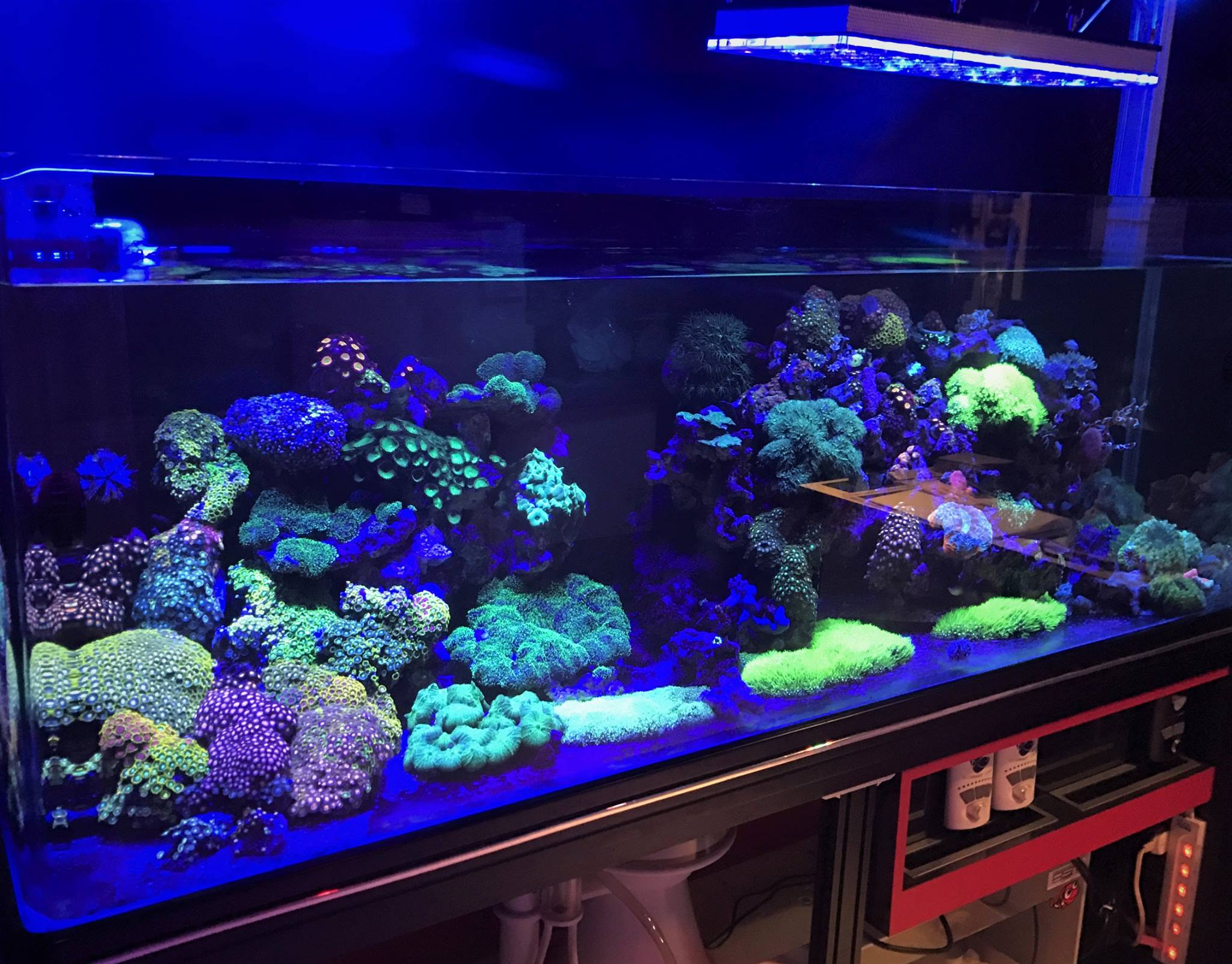 Led Aquarium Moonlight Night View Reef Aquarium Led
