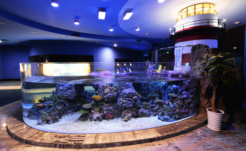public_aquarium_LED_lighting