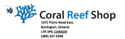 Loja de recife de corais