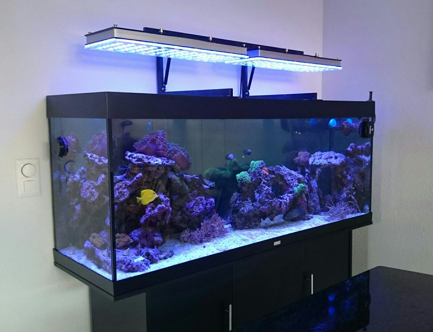 Mounting Aquarium pencahayaan LED