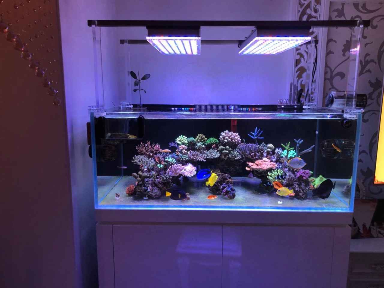 Mounting aquarium LED lighting