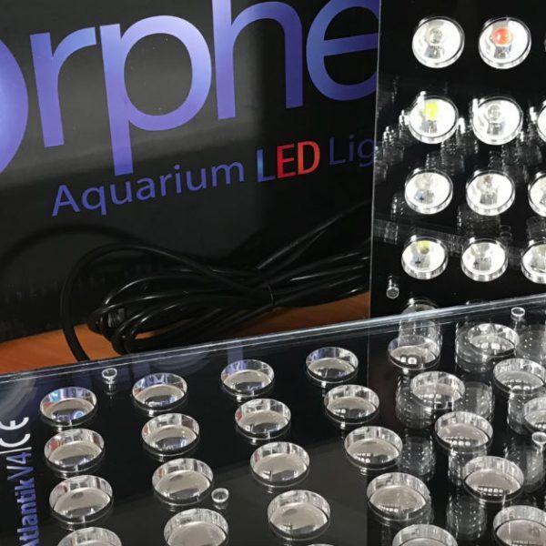 Orphek Atlantik Compact V4 теперь доступен в режиме массового рифового питания и распаковки видео