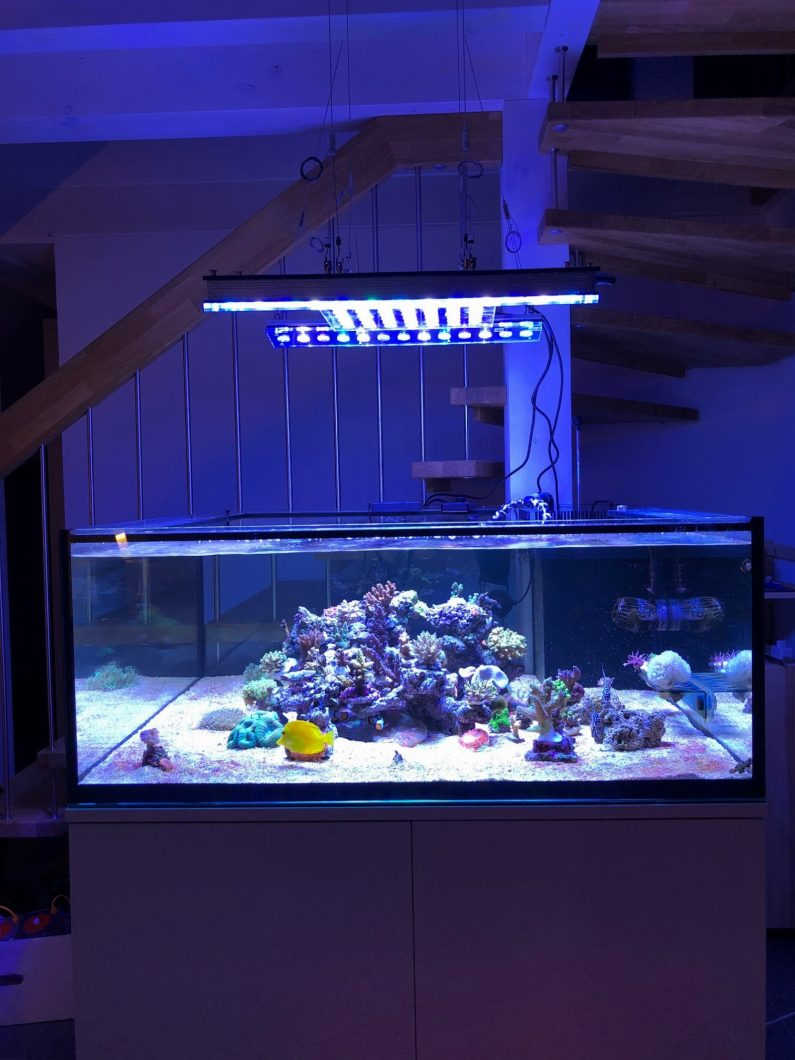 Reef_led_aquarium_lighting_switzerland