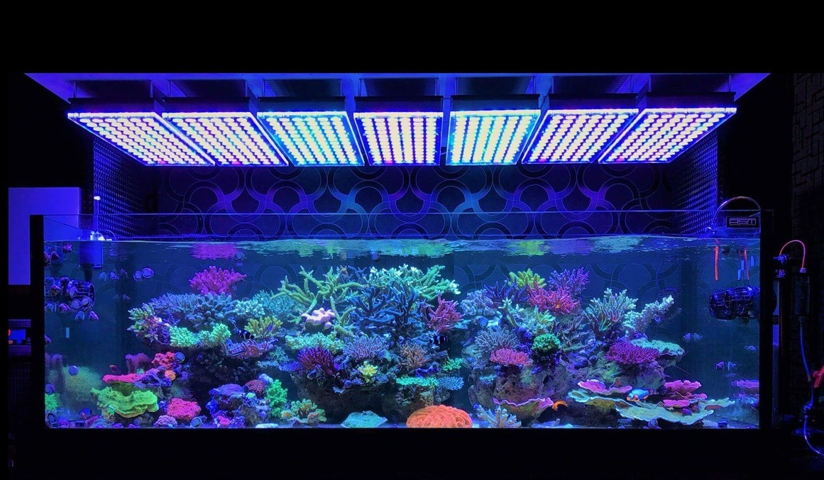 LED reef aquarium Lights