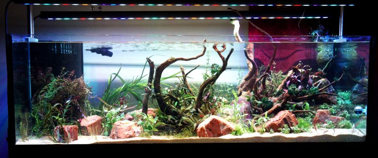 Orphek-OR 120 - Freshwater-Planted