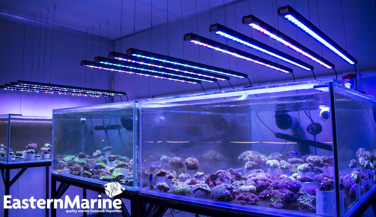 Orphek ELLER 120 Bar LED Aquarium Lighting