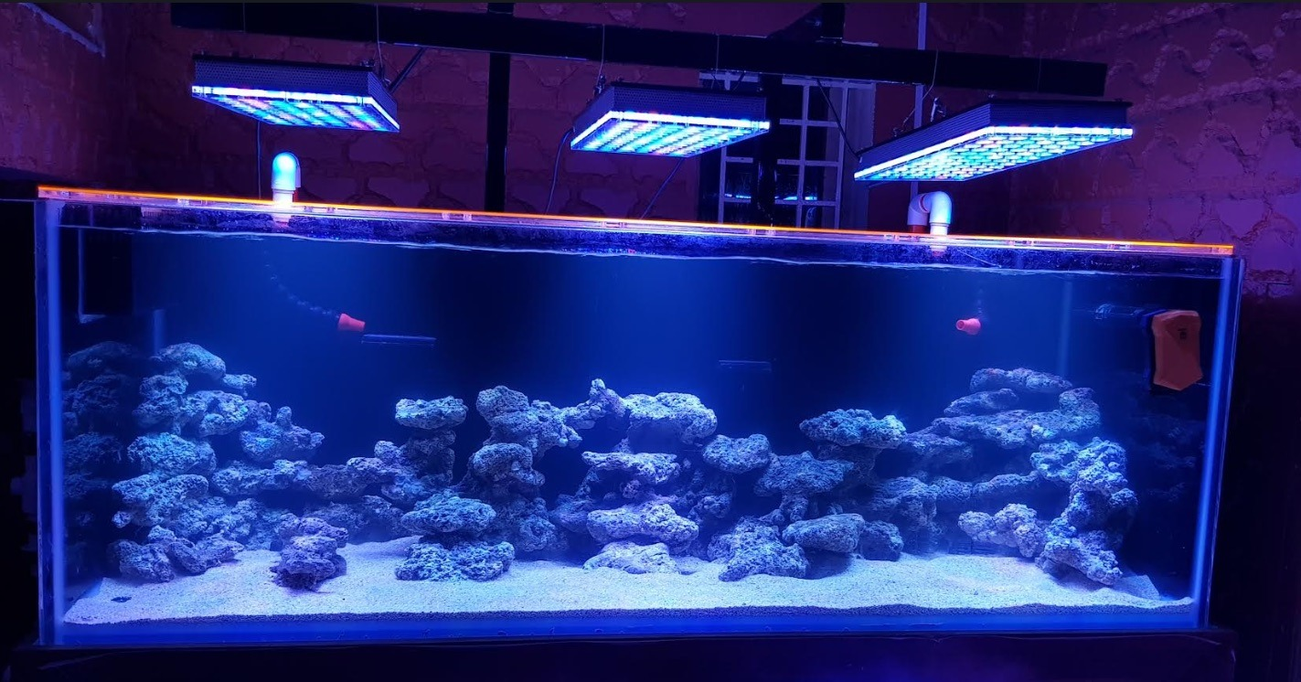 saltwater reef aquarium LED lighting