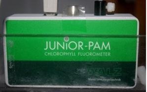 флюорометр