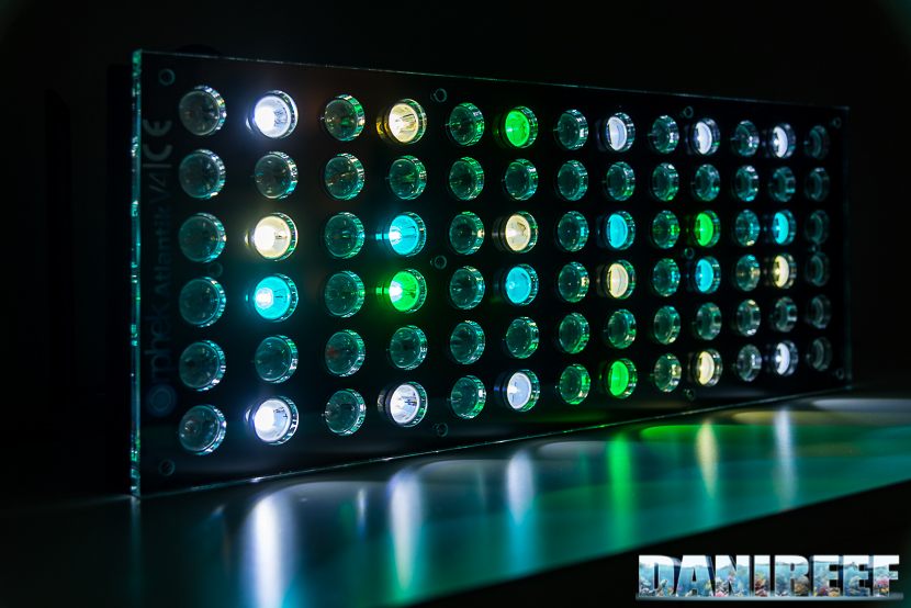 Bedste LED Lights For Reef Aquarium
