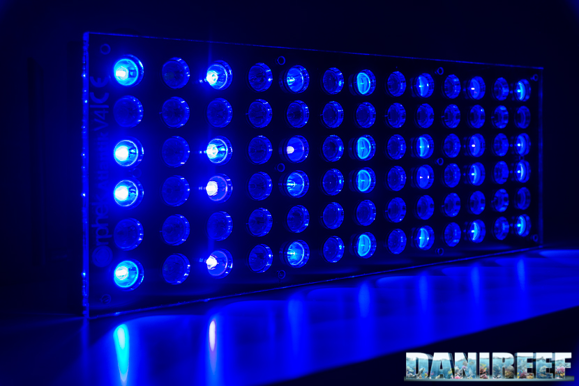 Blue LED Aquarium