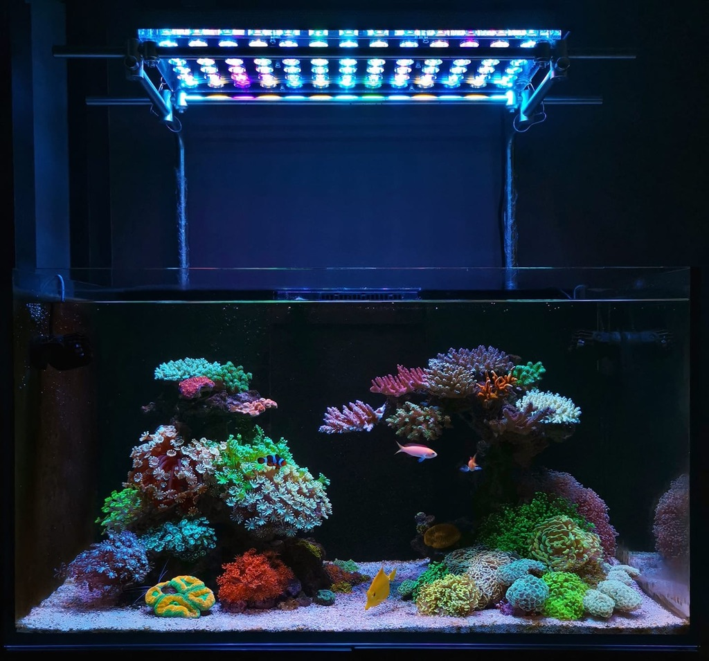 Bästa Reef akvarium LED-ights 2020 Orphek