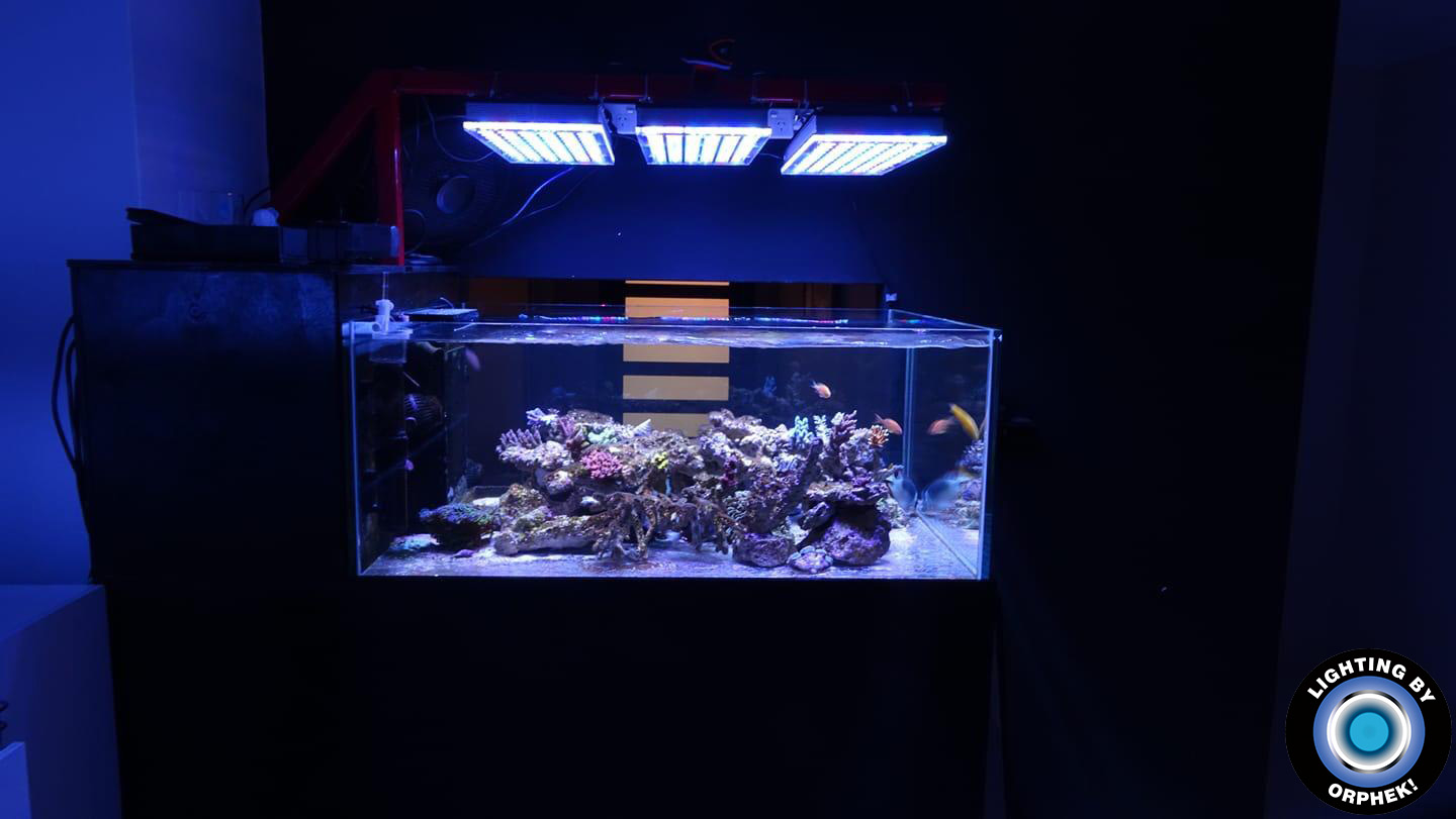 best reef saltwater aquarium lighting 2020