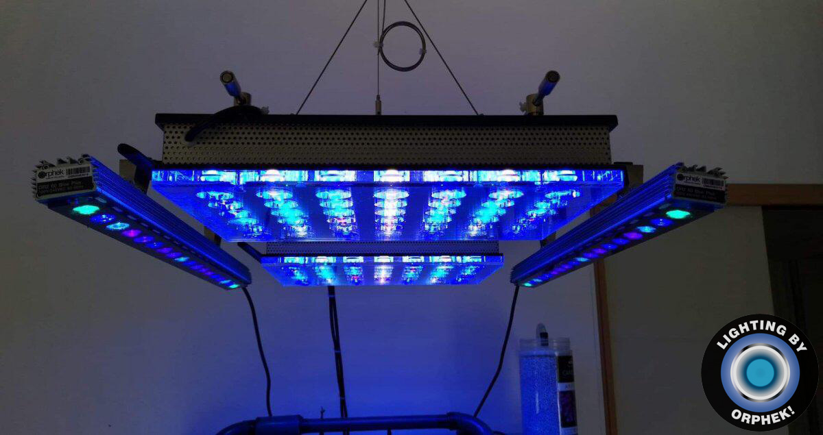 atlantik v4 kompakte aquarium LED