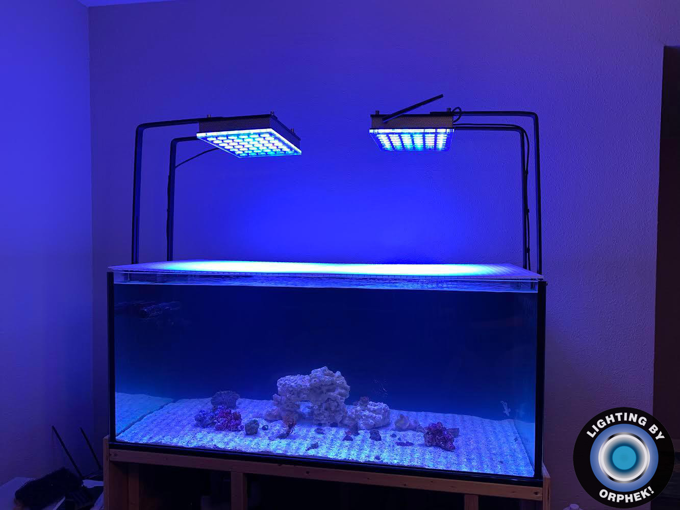 saltwater aquarium LED lighting