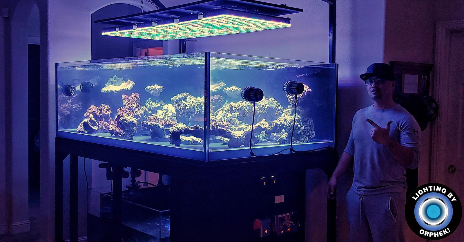 akuarium air dalam terkuat LED pencahayaan 2020