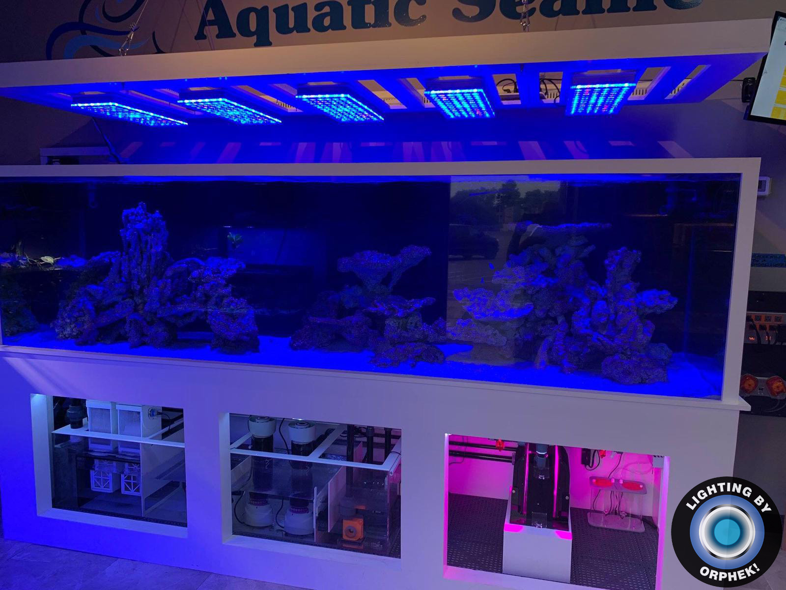 melhor enorme tanque de recife de iluminação LED 2020