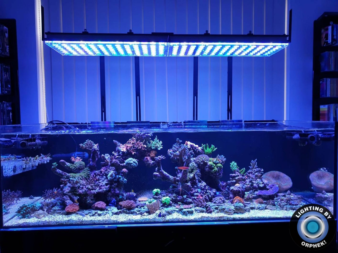 2020 atlantik v4 LED aquarium marine reef tank