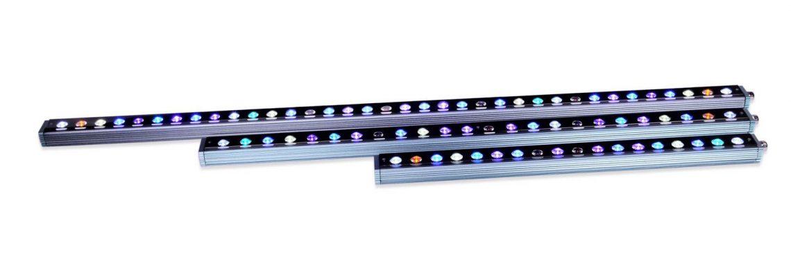 akuarium terumbu karat LED 2020