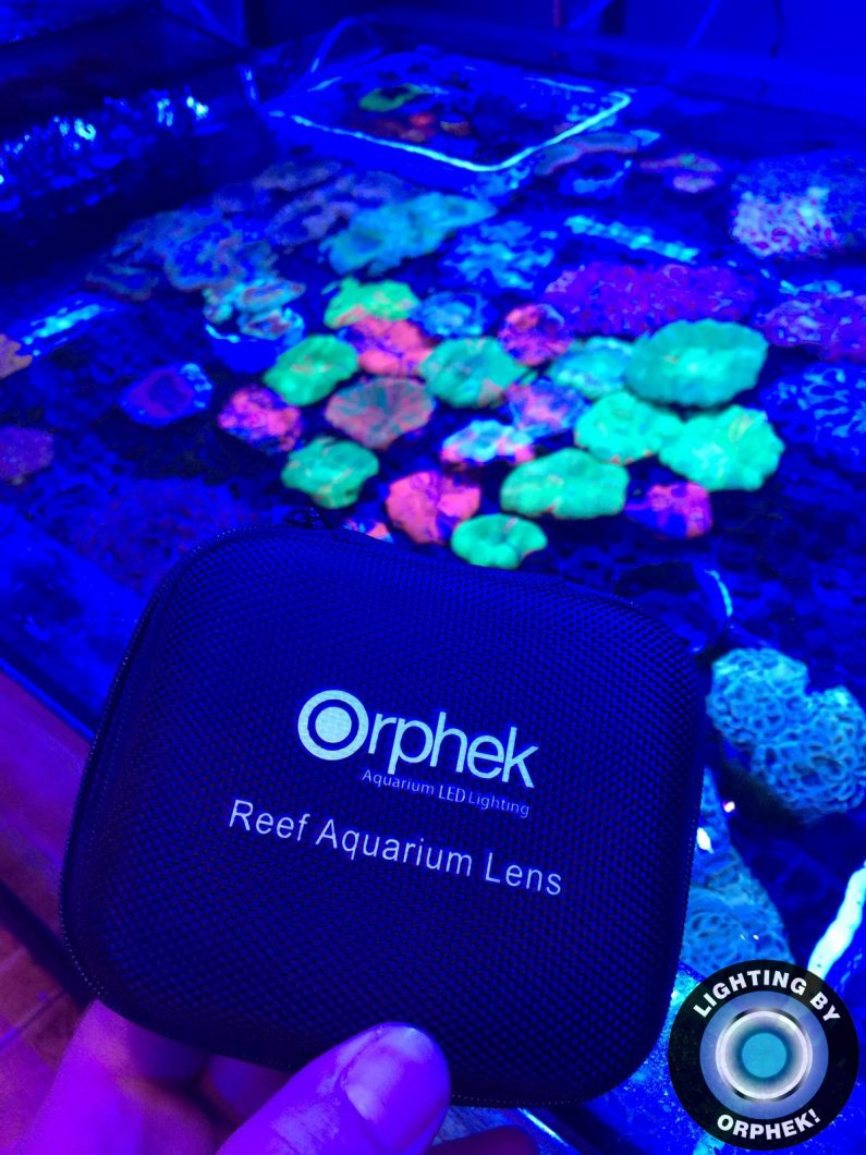 best reef aquarium lens 2020