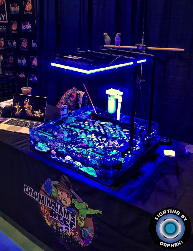 best saltwater aquarium led lighting by orphek 2020
