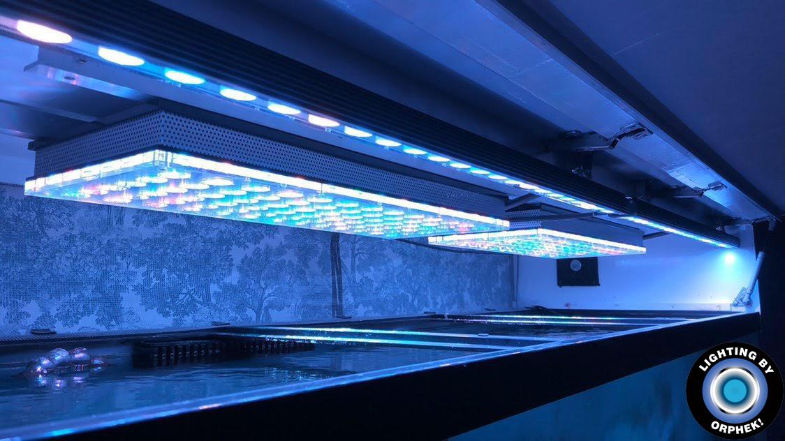 Лучшее светодиодное освещение рифового аквариума 2020