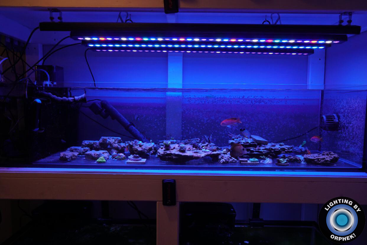OR2 best reef aquarium LED bar