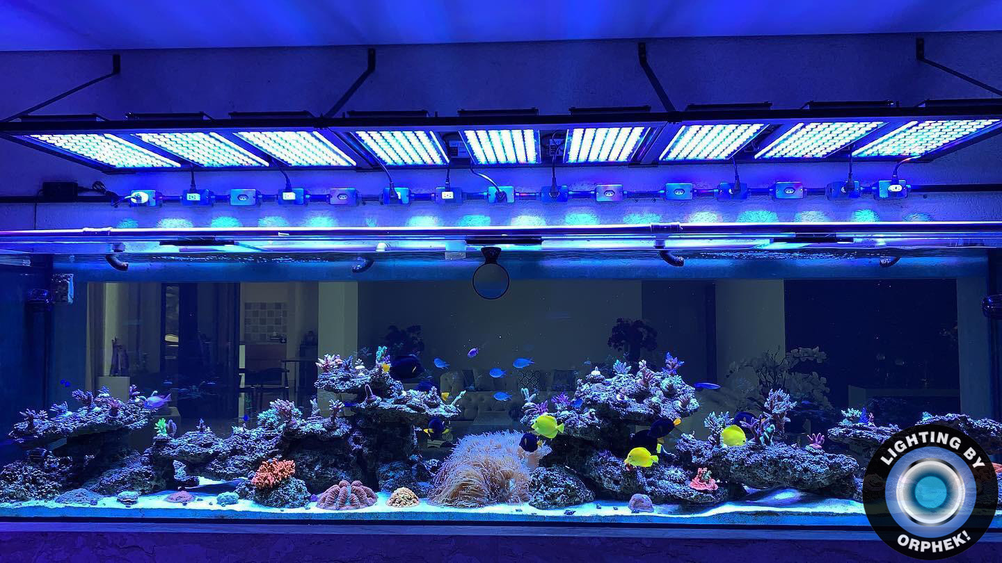strongest saltwater reef aquarium LED lighting 2020