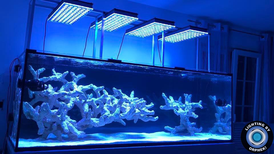 orphek atlantik v4 best aquarium LED lighting 2020