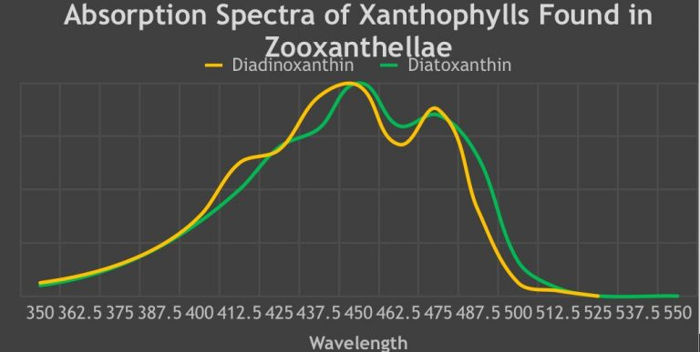 Absorption-Spectra-of-Xanthophylls-Found-in-Zooxanthellae