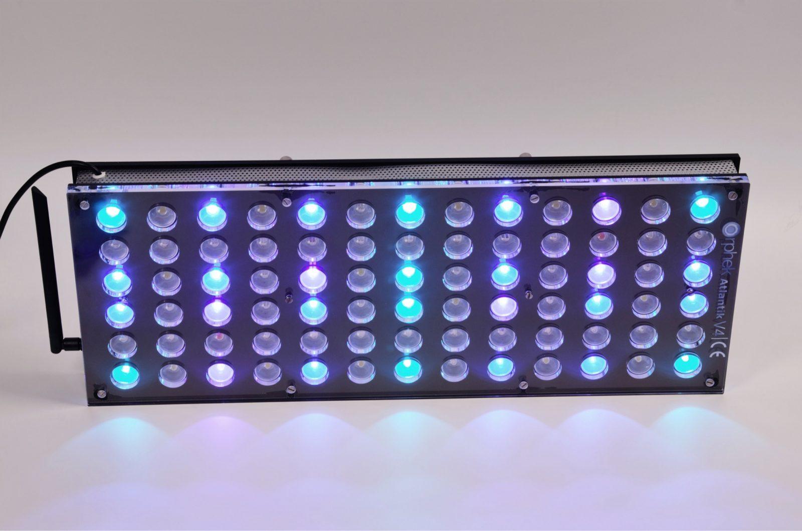תאורת LED Orphek מיכל אור