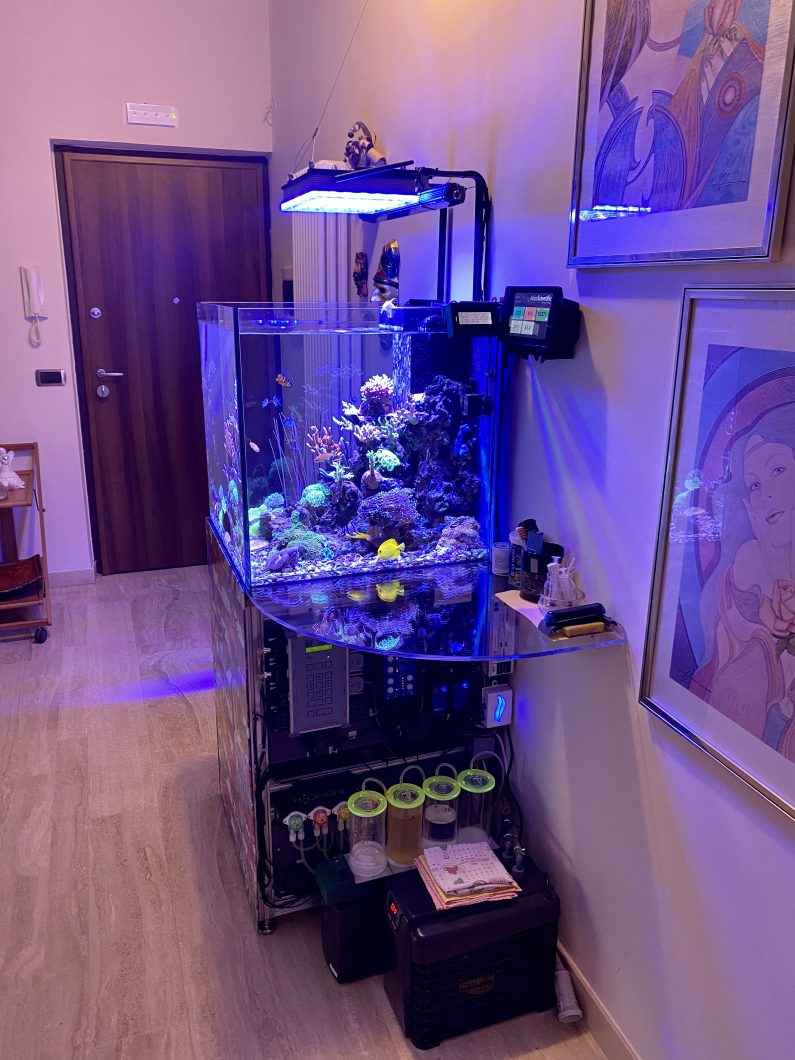 Best_reef_aquarium_led_lights_20205