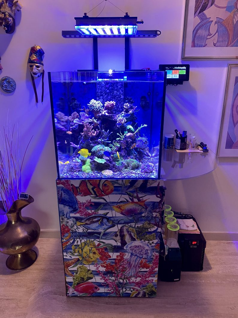Best_reef_aquarium_led_lights_20207