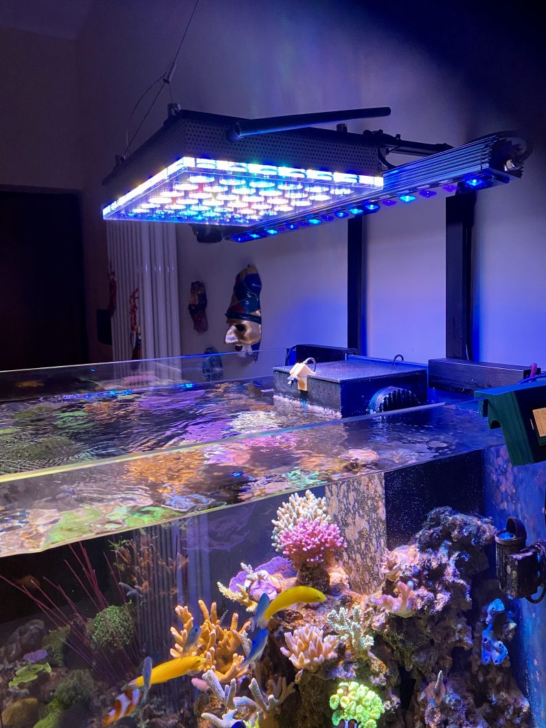 Cubo_reef_aquarium_led_light