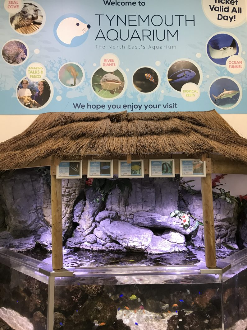 Tynemouth-Aquarium-