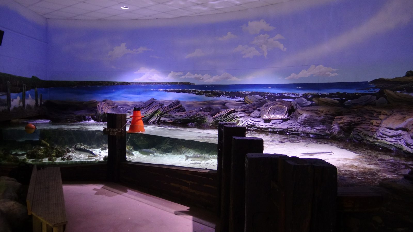 orphek-amazonas-best-led-light-public-aquarium