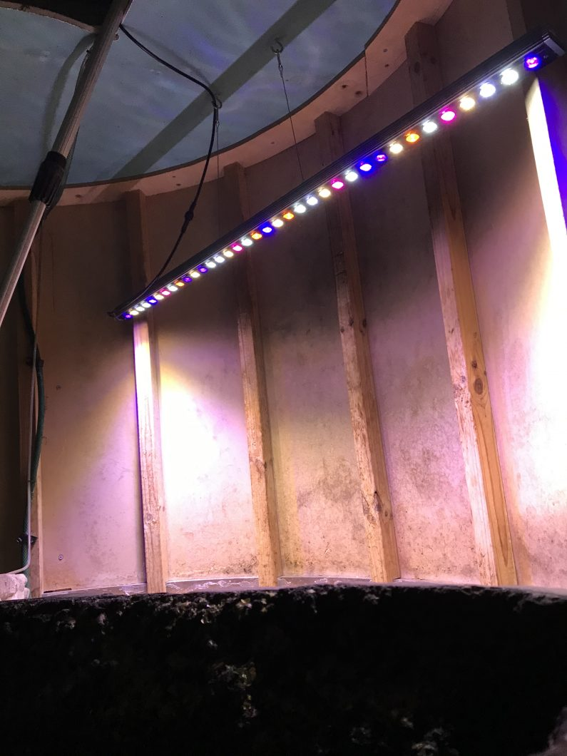 orphek-or2-bar-led-for-planted-aquarium