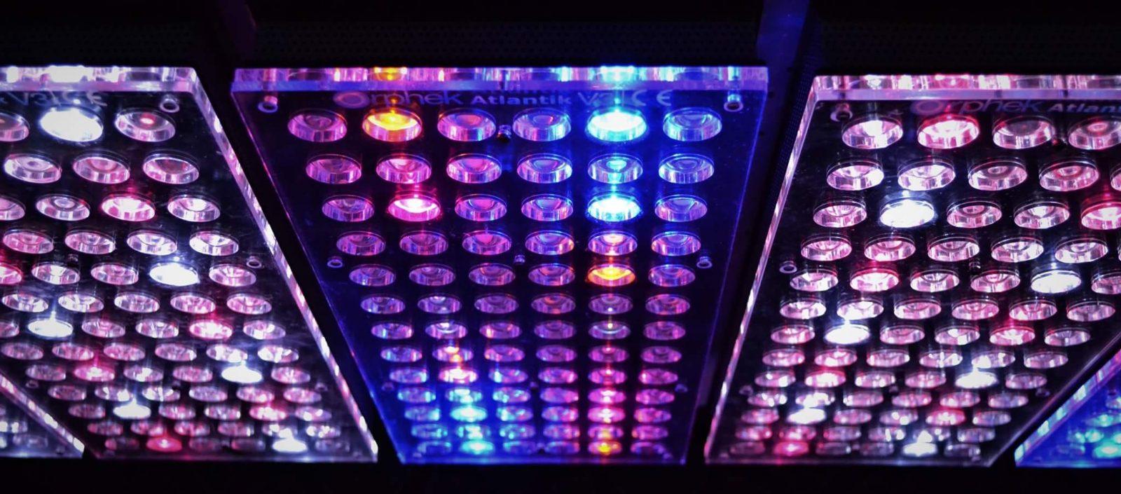 उच्चतम गुणवत्ता मछलीघर रोशनी 2020