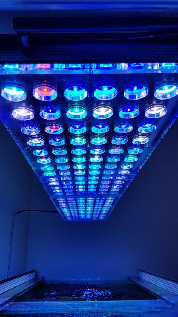 lampu akuarium paling apik atlantik v4