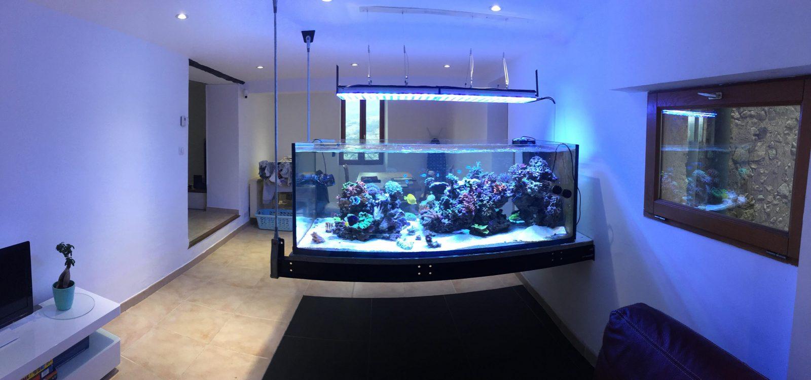 melhor iluminação do tanque de recife 2020