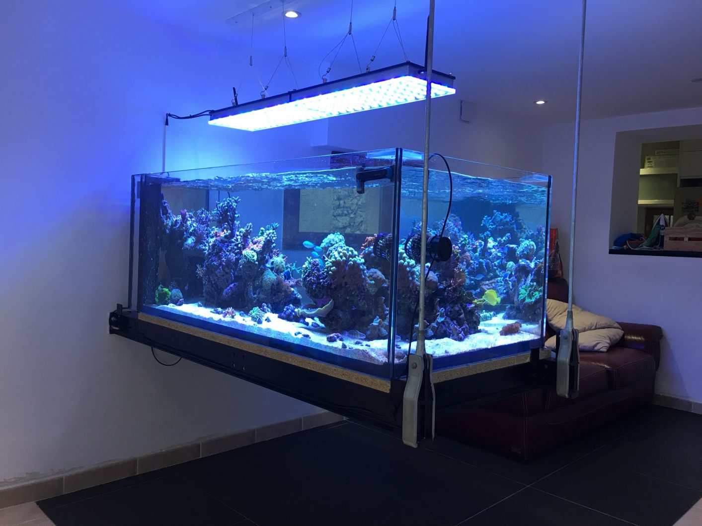 best saltwater reef aquarium led lighting