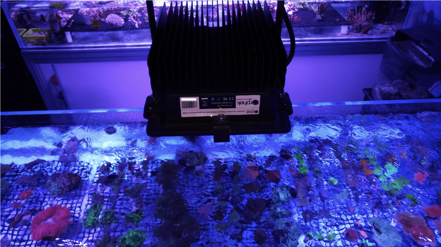 best coral tank lighting